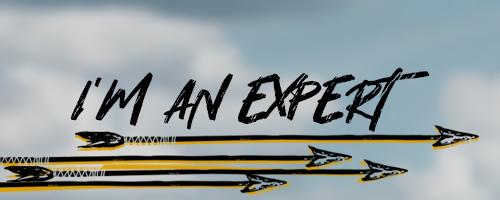 bt_selector_options_experience_expert